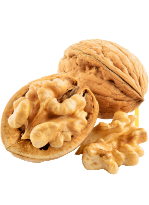 walnut-image.png