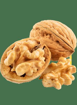 walnut-image.png